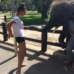 Elefanten Park Bali