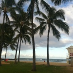Kuhio Beach Park Oahu Hawaii