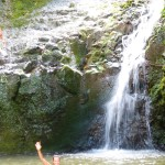 Manoa Falls Oahu Hawaii