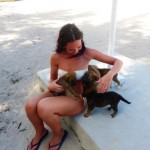 Hunde Welpen Saona Dominikanische Republik