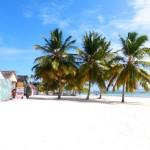 Saona Dominikanische Republik