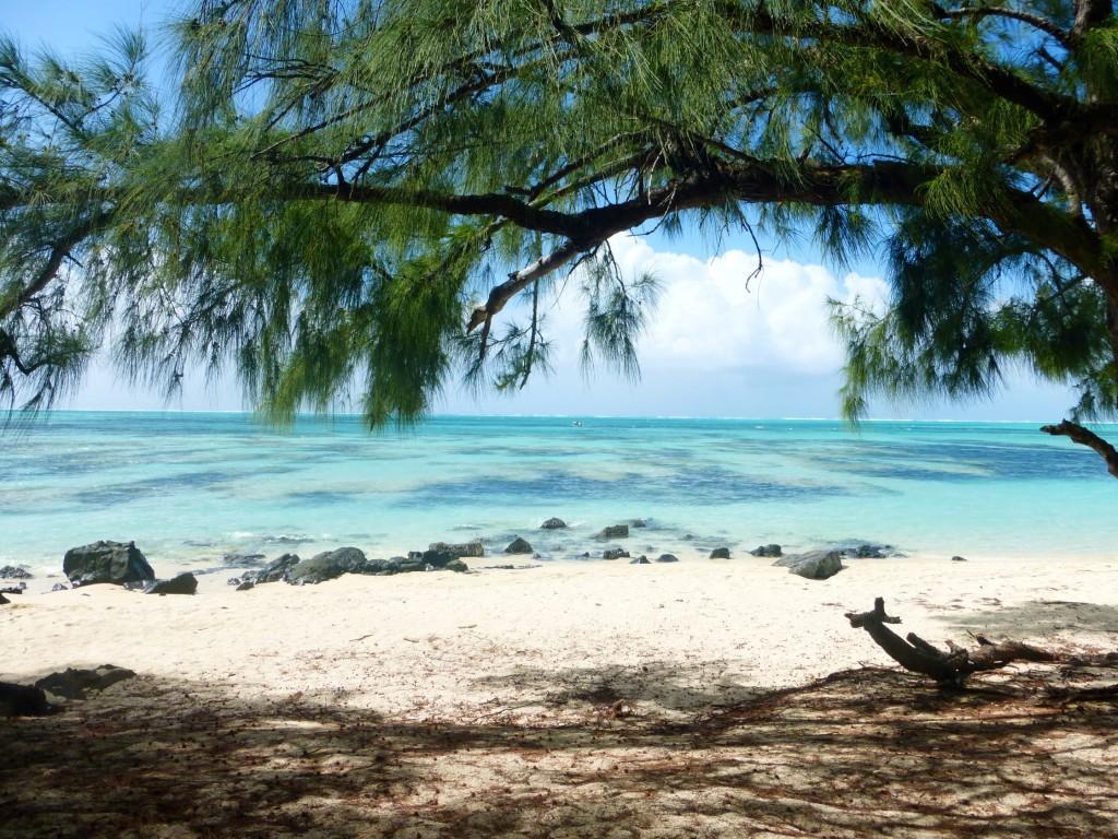 Ile aux Cerfs Mauritius