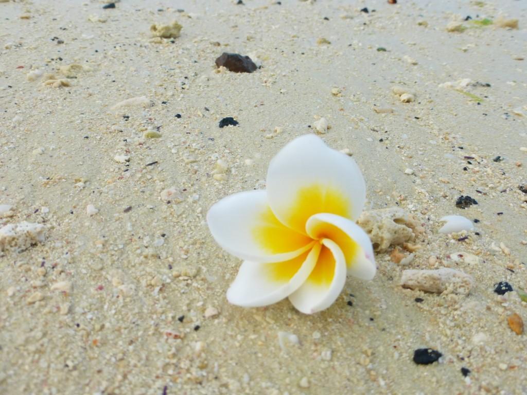 Belle Mare Mauritius