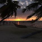 Die Florida Keys: ein bisschen Grün und ganz viel Hellblau