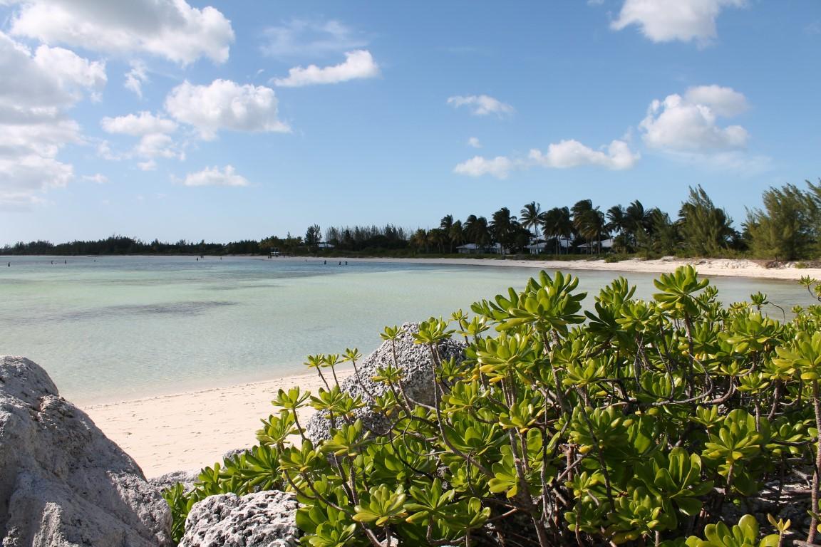Norwegian Sky Bahamas Kreuzfahrt Grand Bahama Strand