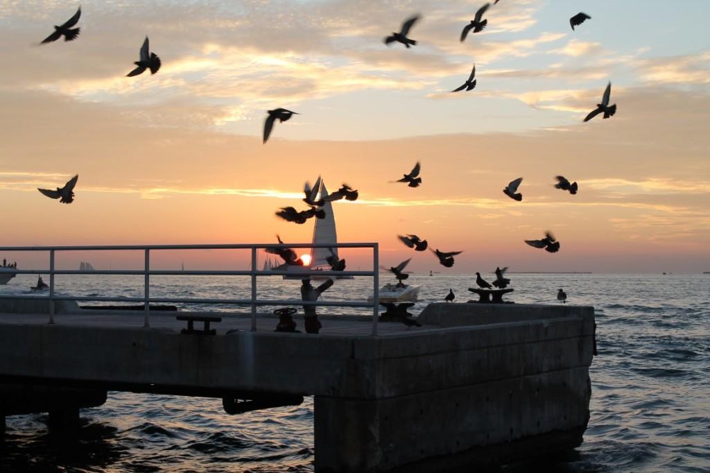 Sonnenuntergang Mallory Square Key West