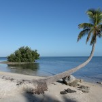 Florida Keys Highlights Islamorada