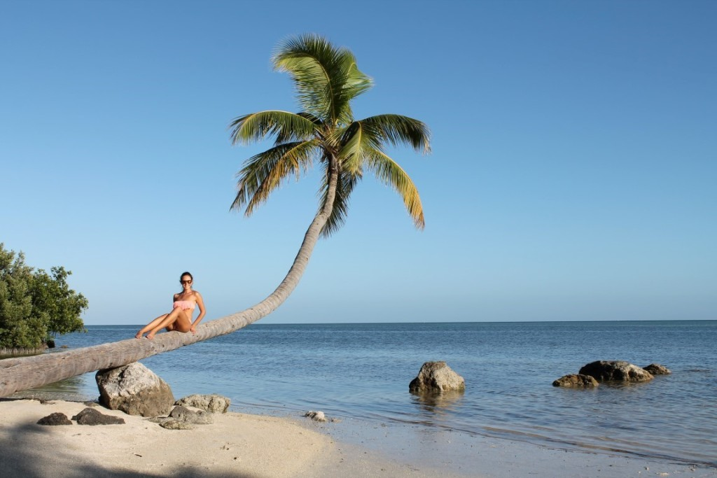 Florida Keys Highlights Islamorada