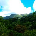Reiseanekdoten #2: In Flip Flops durch den Dschungel