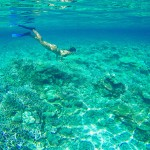 Die Unterwasserwelt des Lhaviyani Atolls