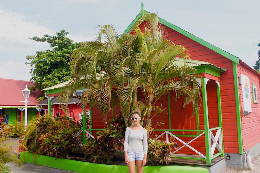 Barbados Karibik typische Speisen - Reiseblog ferntastisch