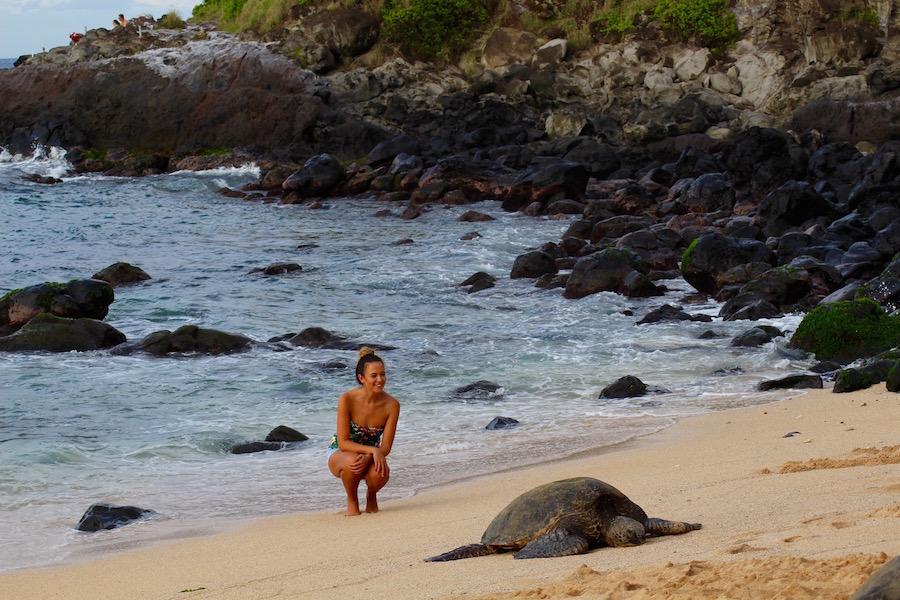 Maui Hawaii - Reiseblog ferntastisch