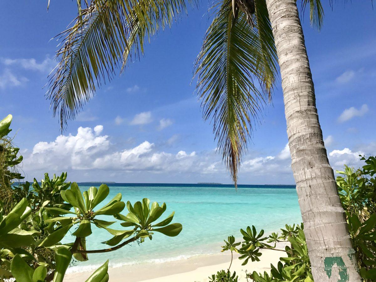 Französisch-Polynesien Cook Islands Neuseeland Reisen mit Baby