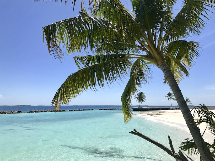 ein nagelneues malediven paradies im raa atoll dhigali. Black Bedroom Furniture Sets. Home Design Ideas