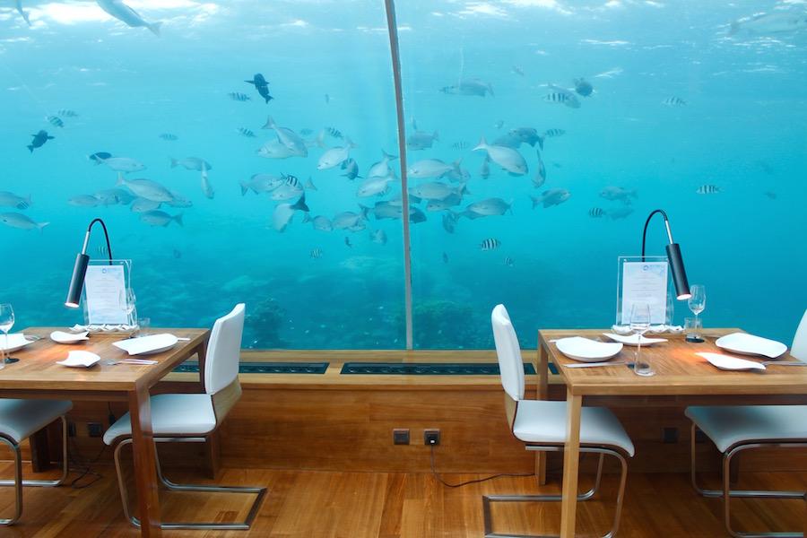 Unterwasserrestaurant Conrad Maldives Rangali Island Hilton Malediven - Reiseblog ferntastisch