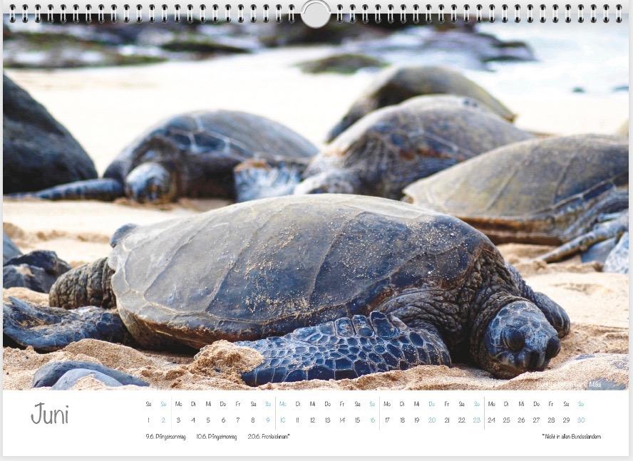 Hawaii-Kalender 2019