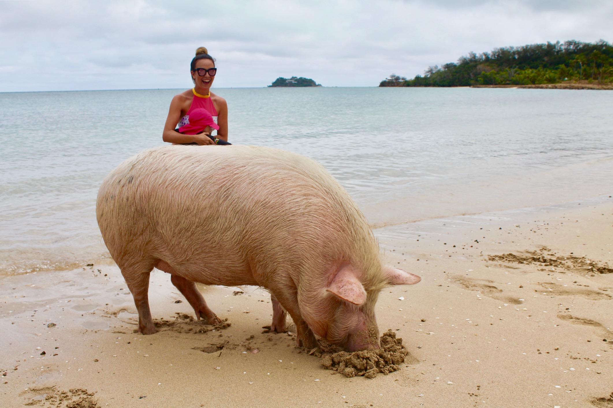 Schwimmen mit Schweinen Six Senses Fiji Fidschi Hotel 5 Sterne